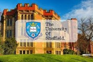 Scholarship at University of Sheffield