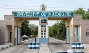 UNIMAID Cut Off Mark 2020