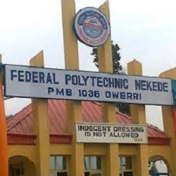 nekede post utme form 2020
