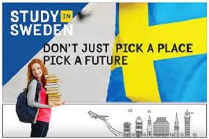Tuition-Free University In Sweden